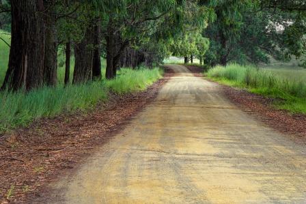 road-to writing-success-road-1894938_1920.jpg